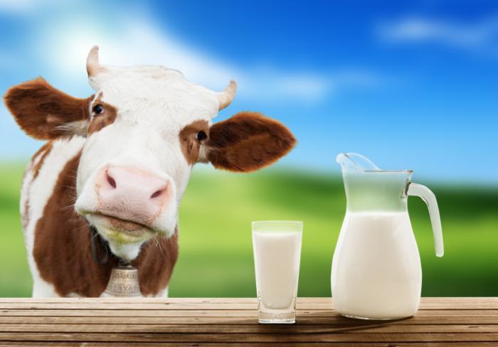công bố tiêu chuẩn chất lượng sữa nhập khẩu 1